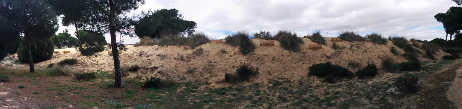 Dunas del odiel botanical garden rajben spain med o med for Camping el jardin de las dunas